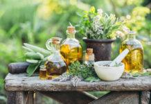 plante medicinale à cultiver au jardin