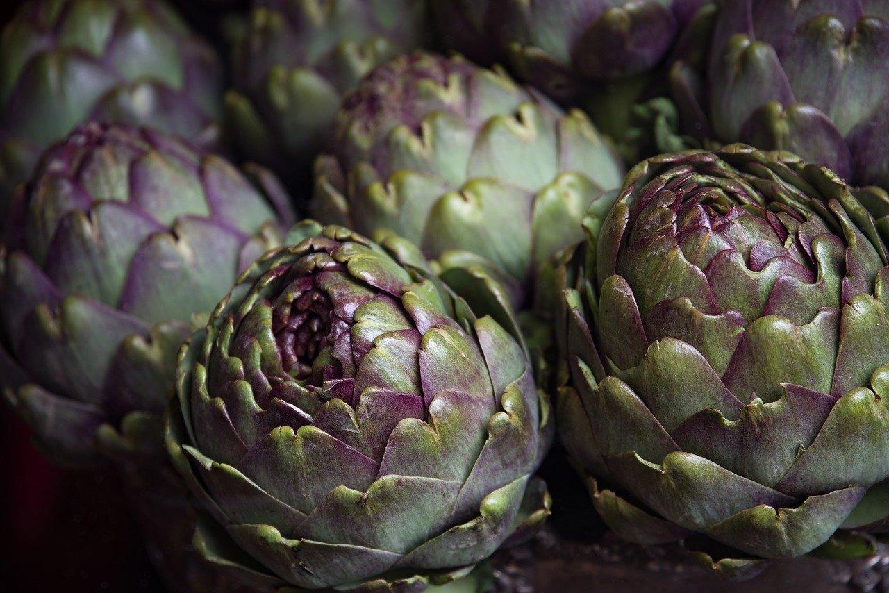 artichaut legume perpetuel